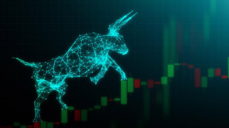 bull market smsf