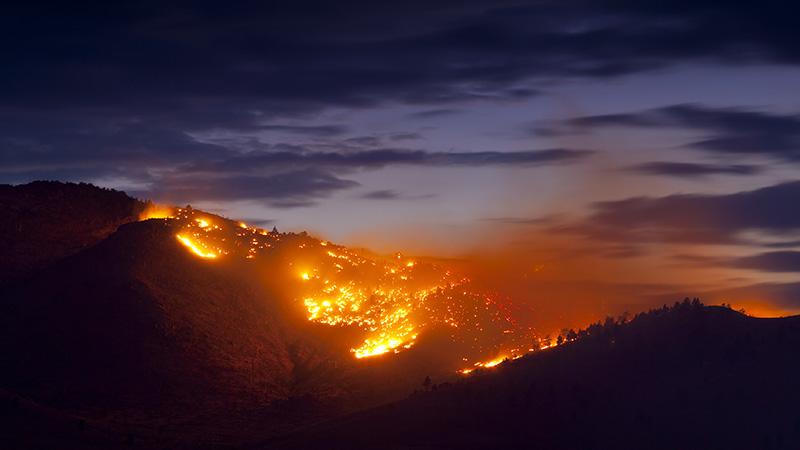 bushfire 2 smsf