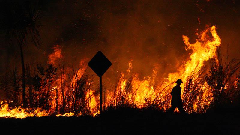 bushfire smsf