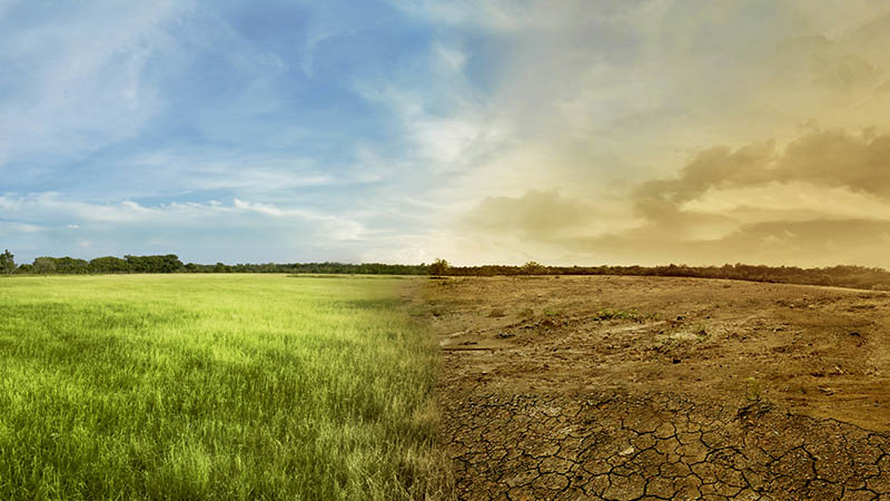 climate change smsf