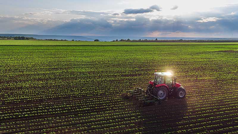 farm land smsf