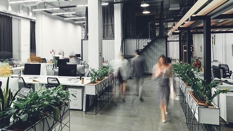 office interior smsf