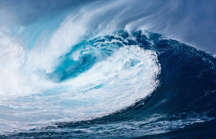 tsunami smsf 1