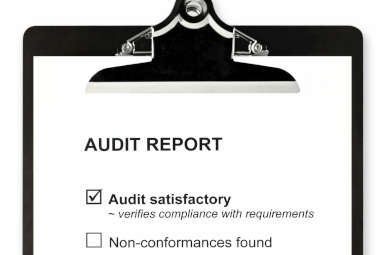 audit report 382