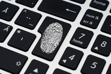Finger print, cyber crime, identity theft