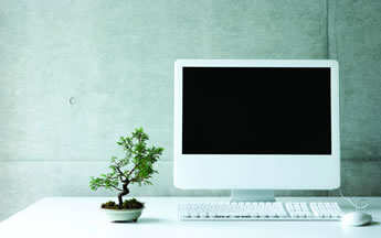 mac book and bonsai 345x216