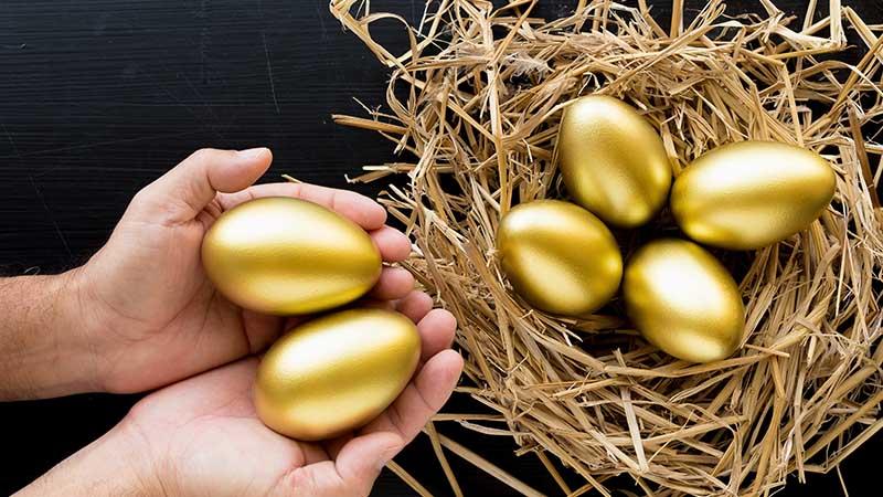 nest golden eggs smsf